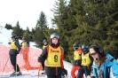 Bezirksschirennen und Familienschitag 2019_34