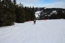 Bezirksschirennen und Familienschitag 2019_35