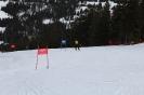 Bezirksschirennen und Familienschitag 2019_36