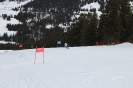 Bezirksschirennen und Familienschitag 2019_43