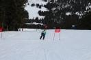 Bezirksschirennen und Familienschitag 2019_53