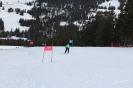 Bezirksschirennen und Familienschitag 2019_54