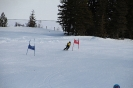 Bezirksschirennen und Familienschitag 2019_68