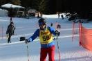 Bezirksschirennen und Familienschitag 2019_79