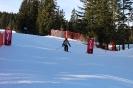 Bezirksschirennen und Familienschitag 2019_83