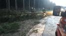 Hochwassereinsatz Lavamünd 2018_43