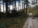 Hochwassereinsatz Lavamünd 2018_50