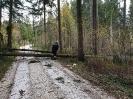Hochwassereinsatz Lavamünd 2018_52