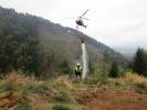Einsatzkräfte trainierten bei Katastrophenschutzübung_40