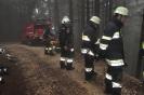 Einsatzkräfte trainierten bei Katastrophenschutzübung_53